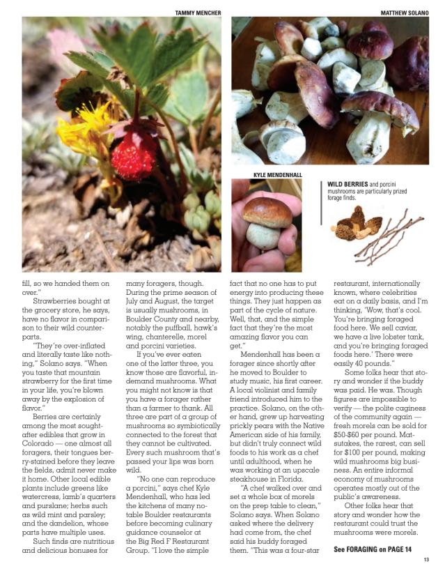Page 1b